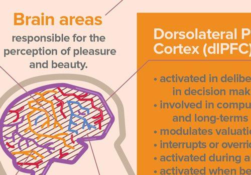 infographic-neuroaesthetics-thumb